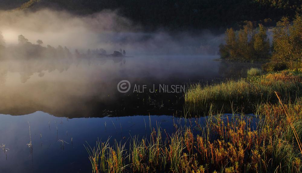 Foggy September morning at Kleivatjörna, Haestad close to ualand, Rogaland county, Norway.