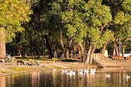 - Lago de Regatas
