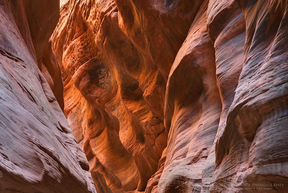 Buckskin Gulch Paria Canyon-Vermilion Cliffs Wilderness Arizona