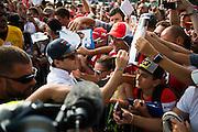 September 3, 2016: Felipe Massa (BRA), Williams Martini Racing , Italian Grand Prix at Monza