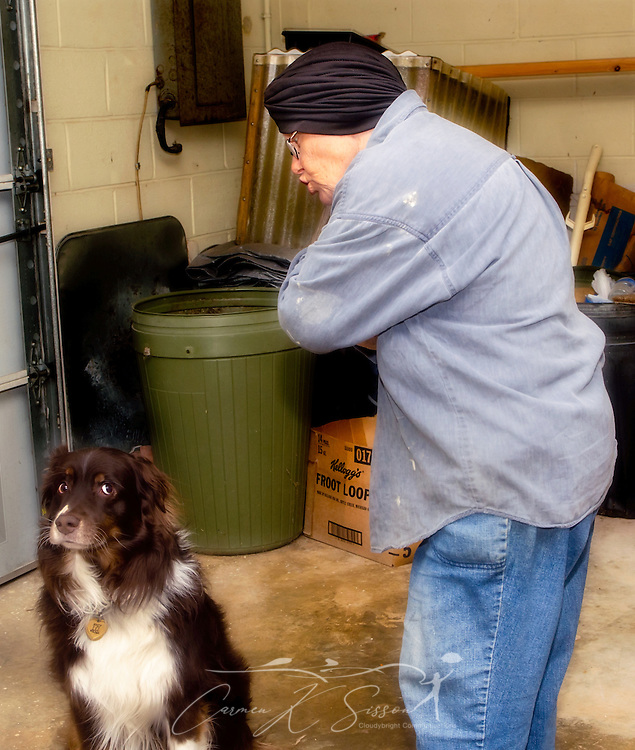 Cowboy, a five-year-old, red-tri Australian Shepherd, listens as Sylvia Heeter explains that he will not receive his Christmas presents unless he sits quietly. (Photo by Carmen K. Sisson/Cloudybright)