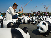 "04 MARCH 2016 - BANGKOK, THAILAND:  A woman takes pictures of the ""1600 Pandas+ World Tour in Thailand: For the World We Live In and the Ones We Love"" exhibit on Sanam Luang in Bangkok. The 1600 paper maché pandas, an art installation by French artist Paulo Grangeon will travel across Bangkok and parts of central Thailand for the next week and then will be displayed at Central Embassy, a Bangkok shopping mall, until April 10. The display of pandas in Thailand is benefitting World Wide Fund for Nature - Thailand and is sponsored by Central Embassy with assistance from the Tourism Authority of Thailand and Bangkok Metropolitan Administration and curated by AllRightsReserved Ltd.    PHOTO BY JACK KURTZ"