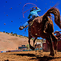 Chill Sampson takes off to head for Perri Sanchez during the Red Rock Classic team roping competition Saturday at Red Rock Park in Church Rock.