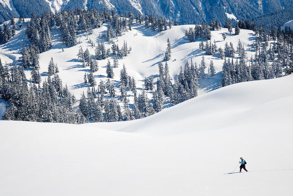 Backcountry skier, Heather Meadows Recreation Area Washington USA