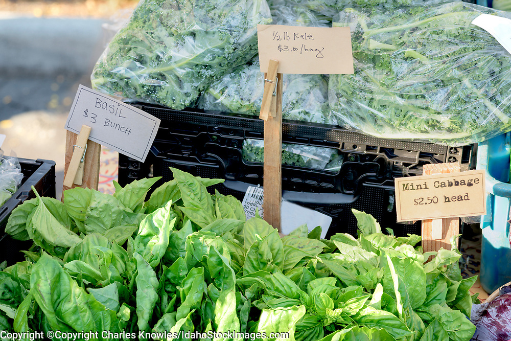 Assortment of herbs at local market.