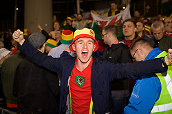 DUBLIN, IRELAND - Tuesday, October 16, 2018: Wales supporters celebrate their 1-0 victory after the UEFA Nations League Group Stage League B Group 4 match between Republic of Ireland and Wales at the Aviva Stadium. (Pic by David Rawcliffe/Propaganda)