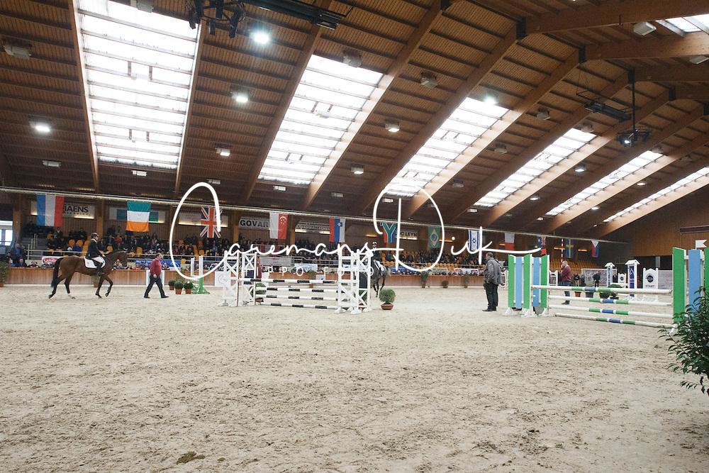 Overview<br /> BWP Hengstenkeuring 2014<br /> Zilveren Spoor Moorsele 2014<br /> &copy; Dirk Caremans
