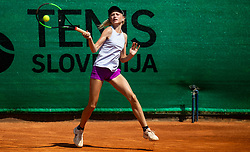 Tenis Fest at ATP Challenger Zavarovalnica Sava Slovenia Open 2019, day 8, on August 16, 2019 in Sports centre, Portoroz/Portorose, Slovenia. Photo by Vid Ponikvar / Sportida