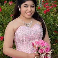 Clarissa Quince Portrait