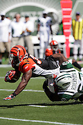 EAST RUTHERFORD, NJ - SEPTEMBER 12:  Running back Rudi Johnson #32 of the Cincinnati Bengals gains some tough yards against defensive tackle Dewayne Robertson #63 of the New York Jets at Giants Stadium on September 12, 2004 in East Rutherford, New Jersey. The Jets defeated the Bengals 31-24. ©Paul Anthony Spinelli *** Local Caption *** Rudi Johnson