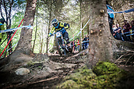 Wyn Masters finding his way in through the woods during his qualifying round at the UCI Mountain Bike World Cup in Fort William, Scotland.