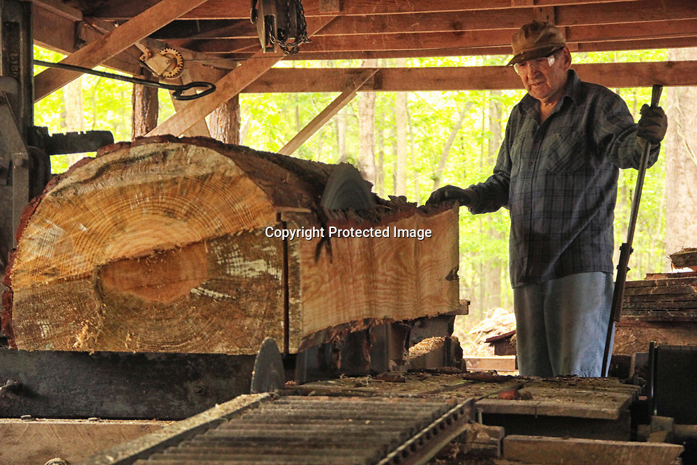 Walter carefully guides a log as the saw blade does its thing.
