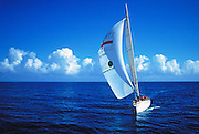 Aerial image of a sailboat off the coast of Fort Lauderdale, Florida, American Southeast, Sailing, model and property releases may be available upon request