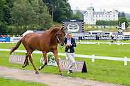 Sarah Bullimore (GBR) & Lilly Corinne - First Horse Inspection - Longines FEI European Eventing Championships - Blair Castle, Scotland - 09 September 2015