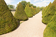 Topiary pathway in garden Littlecote House Hotel, Hungerford, Berkshire, England, UK