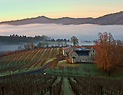 Winter Sunrise at David Hill Winery