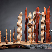 Wood Art Work, Dan Mikel 2013