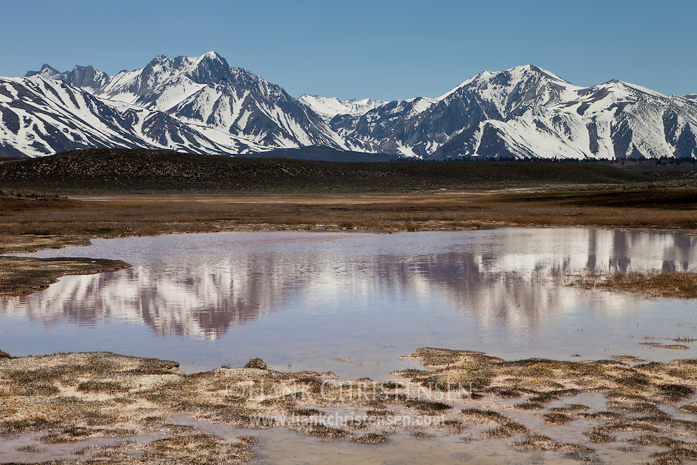 Mt. Morrison and Laurel Mountain are reflected in an alkali pond near Crowley Lake