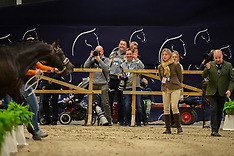 Horse Inspection Dressage - Goteborg 2019