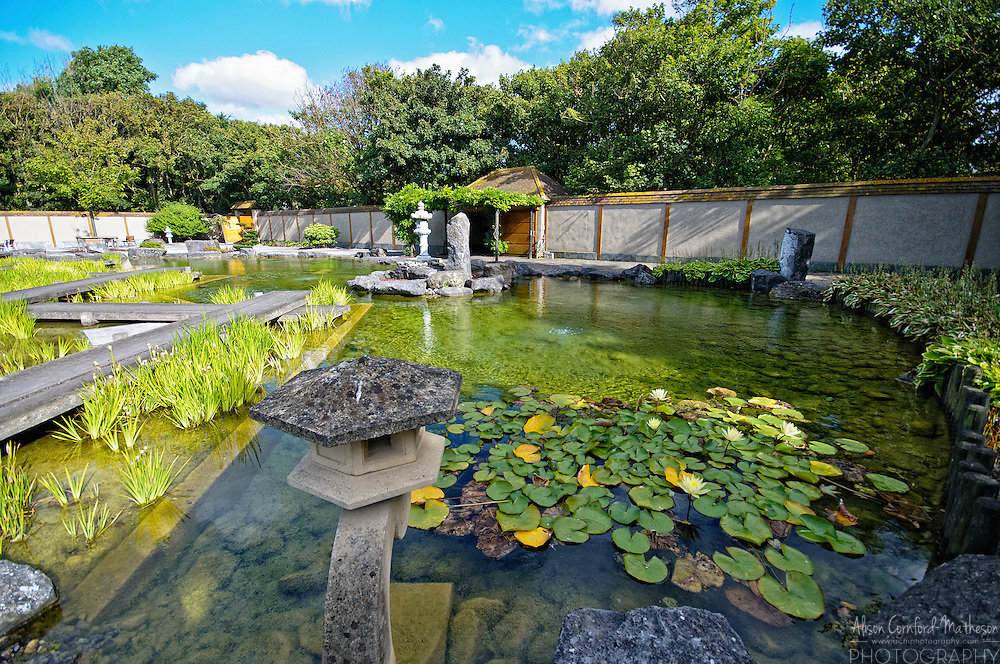 In the middle of the Konings Park in Oostende is a beautiful Japanese Garden, called Shin Kai Tei (Deep Sea Garden). The garden was created in the 'Kaiyusschiki' style and includes water features, bamboo, statues and a rock garden.