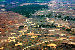 CANADA ALBERTA FORT MCMURRAY 10MAY07 - Aerial view of high density of well pads north of Fort McMurray, Alberta, Canada. The Alberta Tar Sands are the largest deposits of their kind in the world and their production is the single largest contributor to Canada's greenhouse gas emissions...Alberta's tar sands are currently estimated to contain a crude bitumen resource of 315 billion barrels, with remaining established reserves of almost 174 billion barrels, thus making Canada's oil resources ranked second largest in the world in terms of size...The industry has brought wealth and an economic boom to the region but also created an environmental disaster downstream from the Athabasca river, polluting the lakes where water and fish are contaminated. The native Indian tribes of the Mikisew, Cree, Dene and other smaller First Nations are seeing their natural habitat destroyed and are largely powerless to stop or slow down the rapid expansion of the oil sands development, Canada's number one economic driver...jre/Photo by Jiri Rezac / WWF-UK..© Jiri Rezac 2007..Contact: +44 (0) 7050 110 417.Mobile: +44 (0) 7801 337 683.Office: +44 (0) 20 8968 9635..Email: jiri@jirirezac.com.Web: www.jirirezac.com..© All images Jiri Rezac 2007 - All rights reserved.