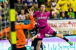 Gal Marguc of RK Celje Pivovarna Lasko during handball match between RK Celje Pivovarna Lasko and THW Kiel in Group Phase A+B of VELUX EHF Champions League, on November 19, 2017 in Arena Zlatorog, Celje, Slovenia. Photo by Ziga Zupan / Sportida