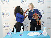 Jane Lynch, right, with Instagram star Toast Meets World, experiences the science behind Febreze products that get homes guest-ready by safely eliminating pet odors, Wednesday, Feb. 25, 2015, in New York.   (Photo by Diane Bondareff/Invision for Febreze/AP Images)