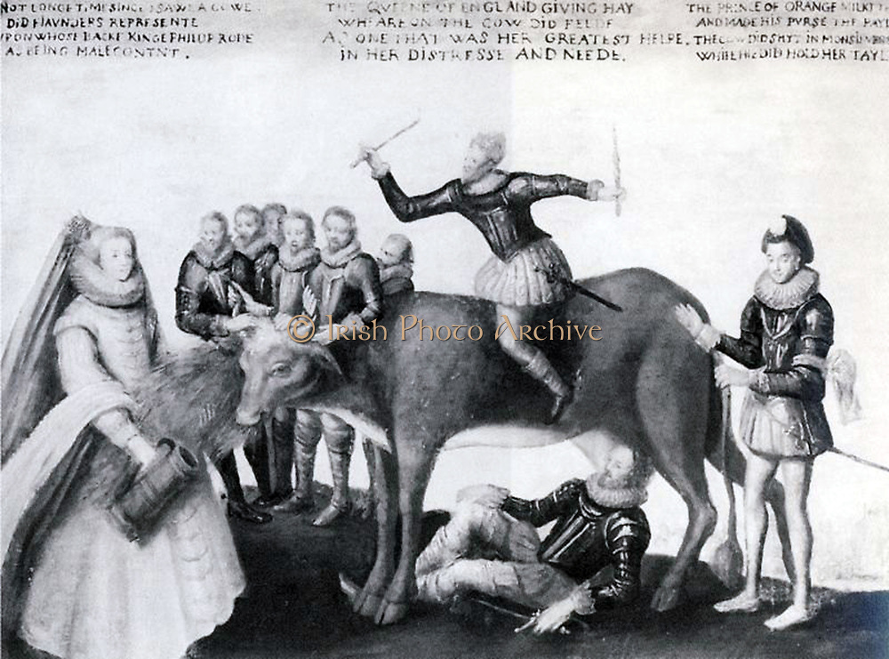 cartoon in the period following the visit of François, Duke of Anjou to Queen Elizabeth's court in 1581–82. caption: Not longe time since I sawe a cowe  Did Flaunders represente  Upon whose backe King Philup rode  As being malecontnt.  The Queene of England giving hay  Wheareon the cow did feede,  As one that was her greatest helpe  In her distresse and neede.  The Prince of Orange milkt the cowe  And made his purse the payle.  The cow did shyt in Monsieur's hand  While he did hold her tayle.