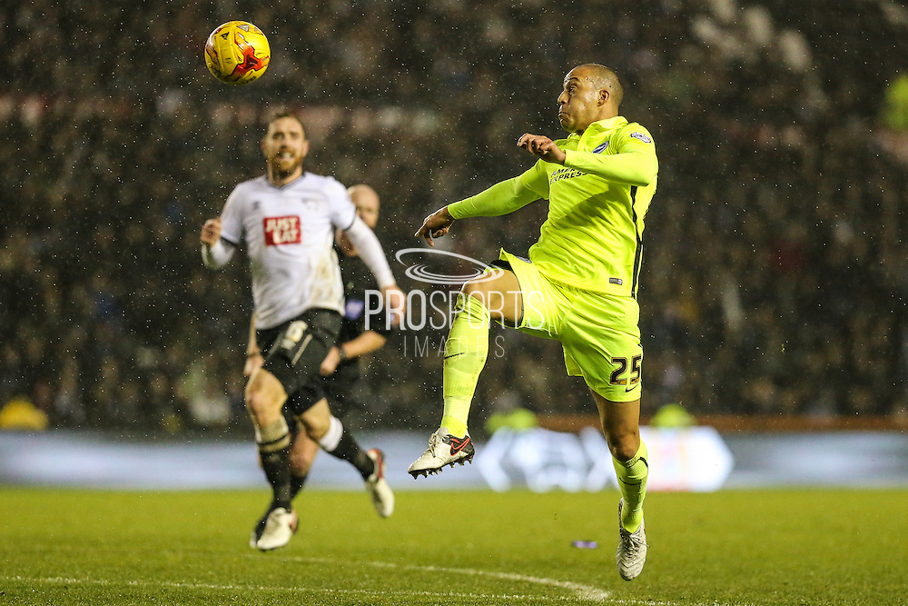 Brighton's Bobby Zamora on the ball during the Sky Bet Championship match between Derby County and Brighton and Hove Albion at the iPro Stadium, Derby, England on 12 December 2015. Photo by Shane Healey.