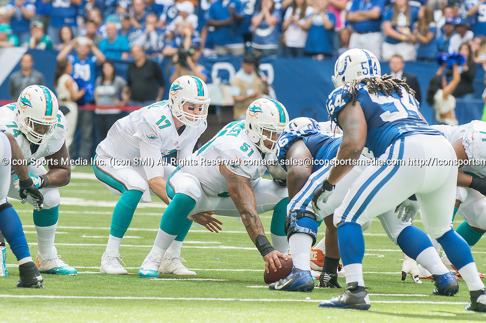 September 15, 2013: Miami Dolphins quarterback Ryan Tannehill (17) during the football game between the Indianapolis Colts vs Miami Dolphins at Lucas Oil Stadium in Indianapolis, IN.