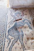 Israel, Lower Galilee, Zippori National Park The city of Zippori (Sepphoris) A Roman Byzantine period city with an abundance of mosaics The Nile House The Centaur mosaic