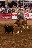Dally ribbon roping competition, Snowmass Rodeo, Snowmass Village (Aspen), Colorado USA.