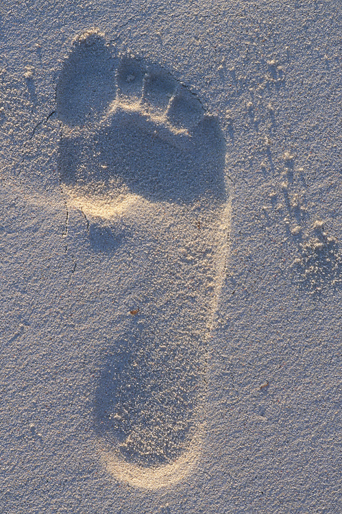 Africa, Kenya, Watamu, Close-up macro detail of footprint in white beach sand along Indian Ocean north of Mombassa