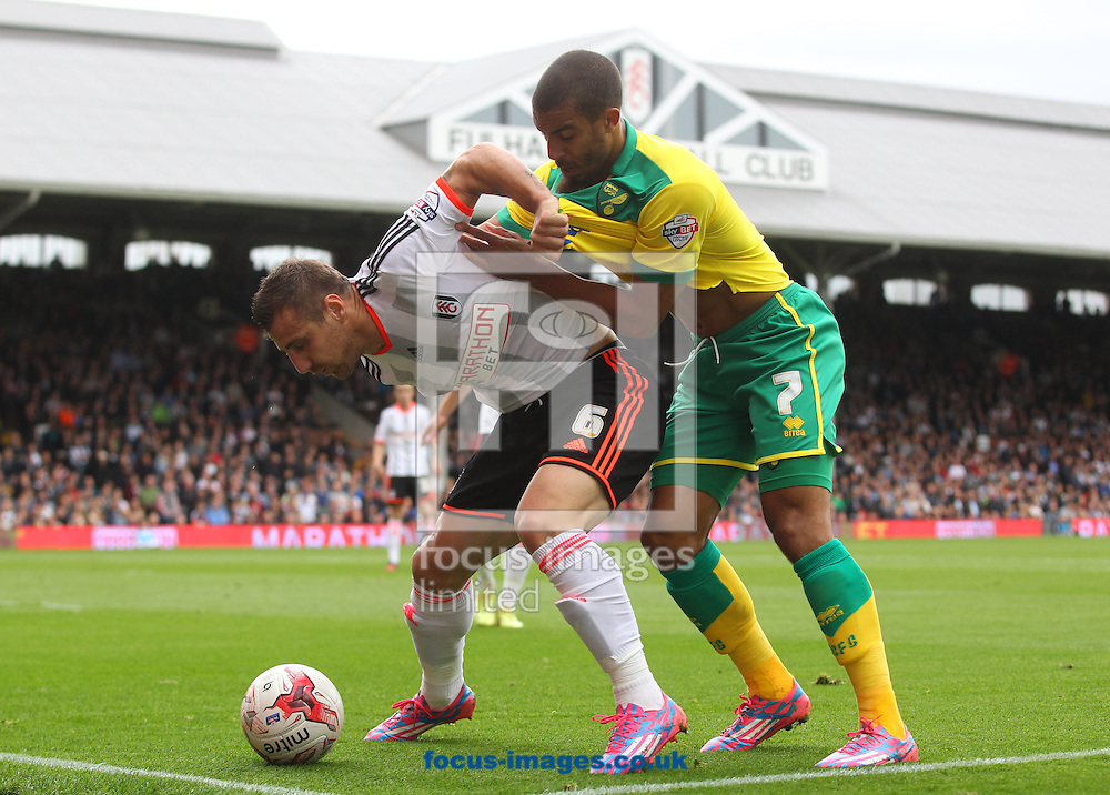 Lewis Grabban of Norwich and Nikolay Bodurov of Fulham in action during the Sky Bet Championship match at Craven Cottage, London<br /> Picture by Paul Chesterton/Focus Images Ltd +44 7904 640267<br /> 18/10/2014