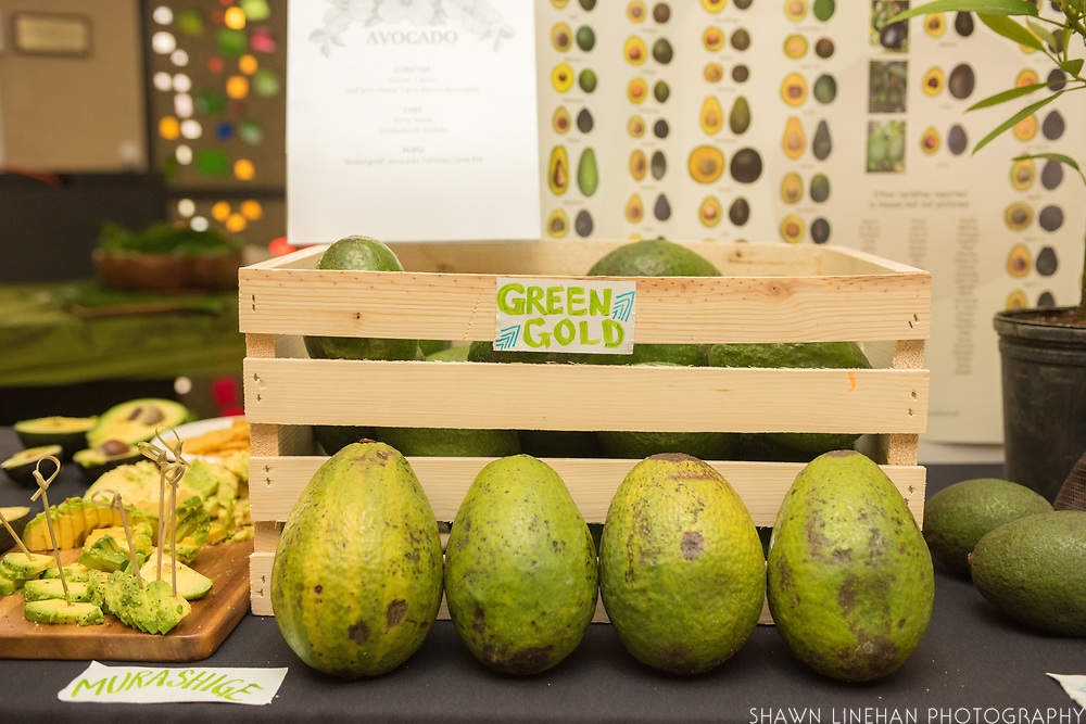 AVOCADO<br /> Curator: Daniel Carrol, GoFarm Hawai'i and Barels Avocados<br /> Chef: Kelly Stern, Goldielocks Grinds