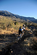 A cyclist rides a mountain bike on the 50 Year Trail on State Trust Land in the Sonoran Desert, Catalina, Arizona, USA.