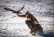 Kazakh eagle hunters from far western province of Bayan Olgii compete in winter festival, Mongolia.