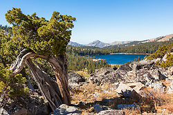 """White Rock Lake 8"" - Photograph of the Tahoe backcountry lake called White Rock Lake."