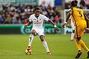 Leroy Fer of Swansea City during the Premier League match between Swansea City and Brighton and Hove Albion at the Liberty Stadium, Swansea, Wales on 4 November 2017. Photo by Andrew Lewis.