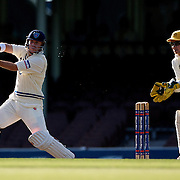 New South Wales batsman David Warner in action during day two of the Sheffield Shield Cricket match between New South Wales and Western Australia at the Sydney Cricket Ground, Sydney, Australia on March 6, 2009.  Photo Tim Clayton