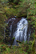A waterfall with no official name in Sasquatch Provincial Park, British Columbia, Canada.  This waterfall can be found along the road into Sasquatch Provincial Park between Trout Lake and the turnoff for Hicks Lake.