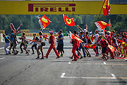 September 4-7, 2014 : Italian Formula One Grand Prix - Tifosi storm the track after the race.