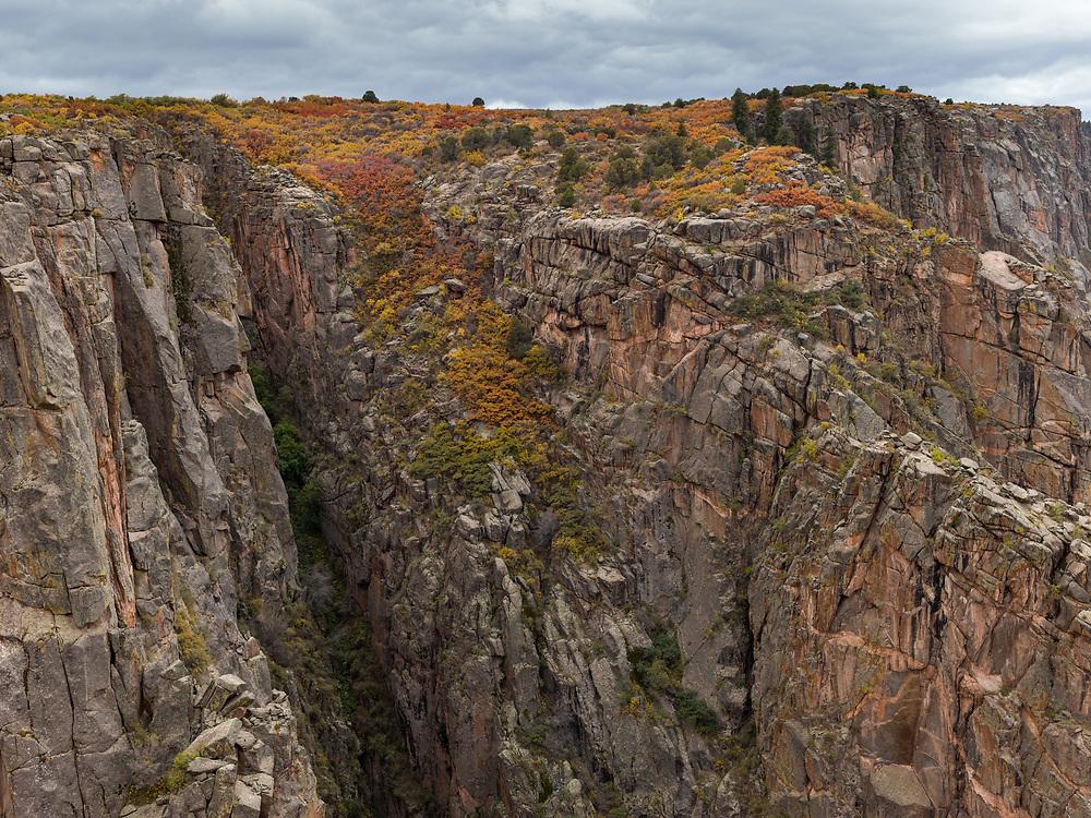 https://Duncan.co/vegetation-on-the-cliffs-at-black-gunnison