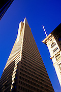 Image of the Transamerica Pyramid, San Francisco, California, America west coast