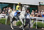 Jockey John Egan on Roy Rocket in the Parade Ring before the 2.50 race at Brighton Racecourse, Brighton & Hove, United Kingdom on 10 June 2015. Photo by Bennett Dean.