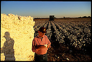 01: MISCELLANY COTTON FARMER