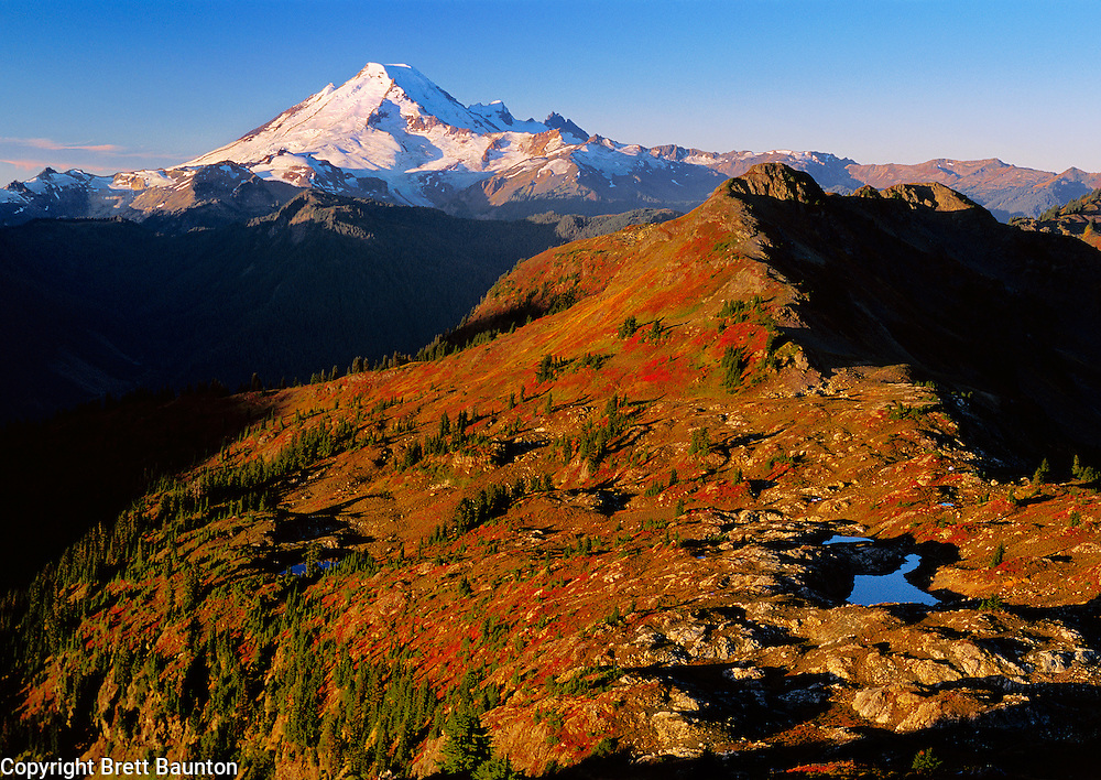 Mt. Baker, WA, USA..Mt. Baker Wilderness Area from.Yellow Aster Butte summit. North Cascades..Fall Colors and Alpine Ponds on the High Divide..2000 Brett Baunton.