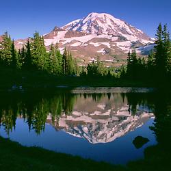 Mt. Rainier Reflected in Tarn at Spray Park, Mt. Rainier National Park, Washington, US