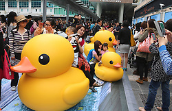 59594171.People pose with smaller versions of a huge rubber duck floating on the waters at the Victoria Harbor in Hong Kong, south China, May 2, 2013. The largest rubber duck was created by Dutch artist Florentijn Hofman, with 18 meters of length, 15 meters of width and height. The duck has visited 12 cities since 2007.,   May 2, 2013 Photo by: i-Images.UK ONLY