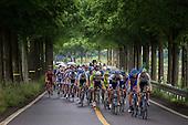 0611 | Stage 5 - Yeosu to Gangjin (175 km)